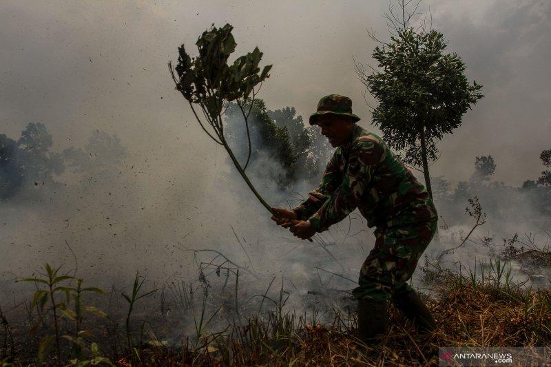 Riau akan tetapkan status siaga darurat Karhutla