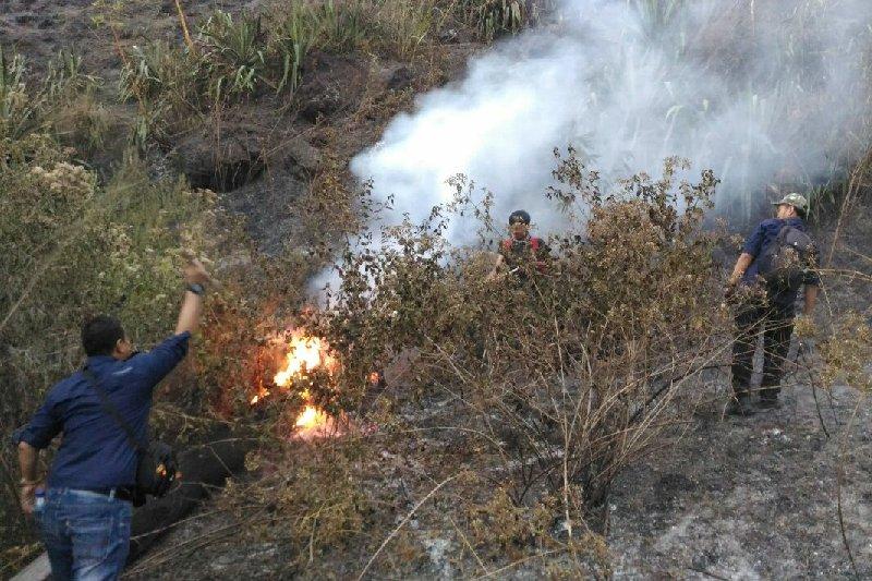 Jalur pendakian Gunung Guntur tetap dibuka untuk umum walau kebakaran hutan