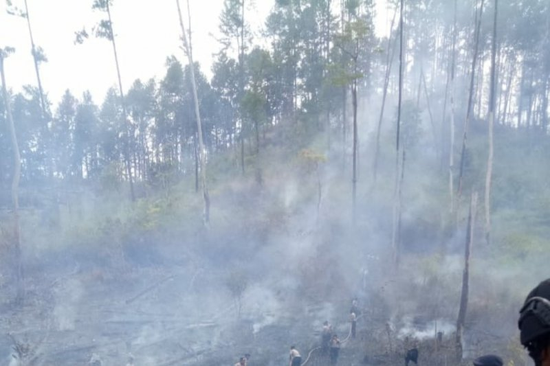 BMKG: 16 titik panas muncul ditujuh daerah wilayah Aceh