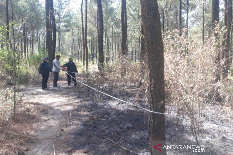 SAR Linmas Kaliurang mewaspadai potensi karhutla sisi selatan Merapi