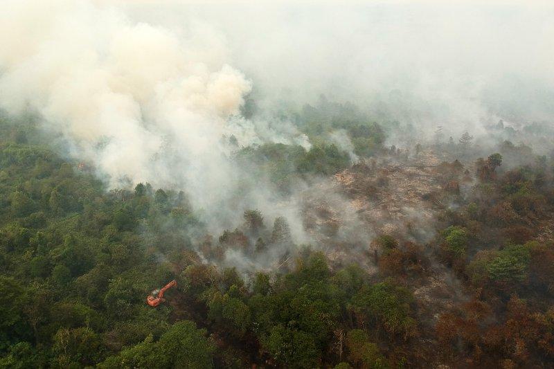 Dansatgas Karhutla : Lahan gambut di Jambi masih menyimpan bara api