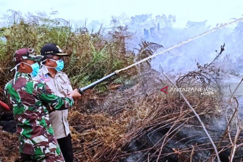 Bupati Aceh Barat pimpin pemadaman karhutla