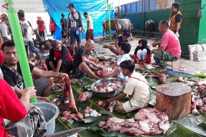 Hewan kurban di Manokwari juga disumbang intansi dan individu