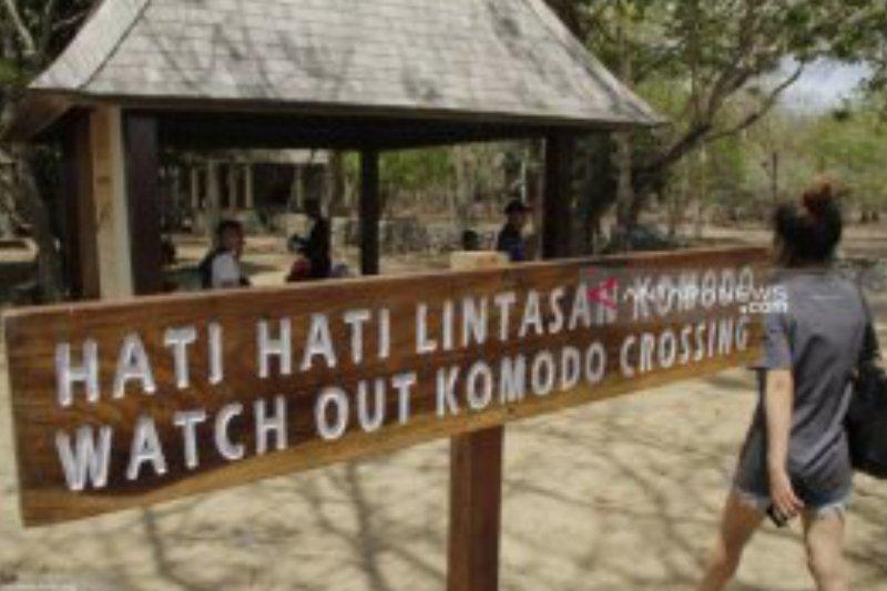 Pulau Komodo sudah di konservasi