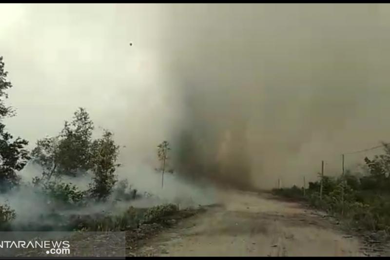 Asap kebakaran hutan dikhawatirkan ganggu aktivitas Bandara Tjilik Riwut
