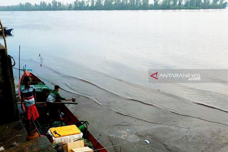 Air sungai di pesisir Kotim mulai payau