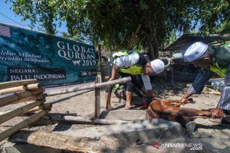 Bantuan hewan kurban Global Qorban Malaysia
