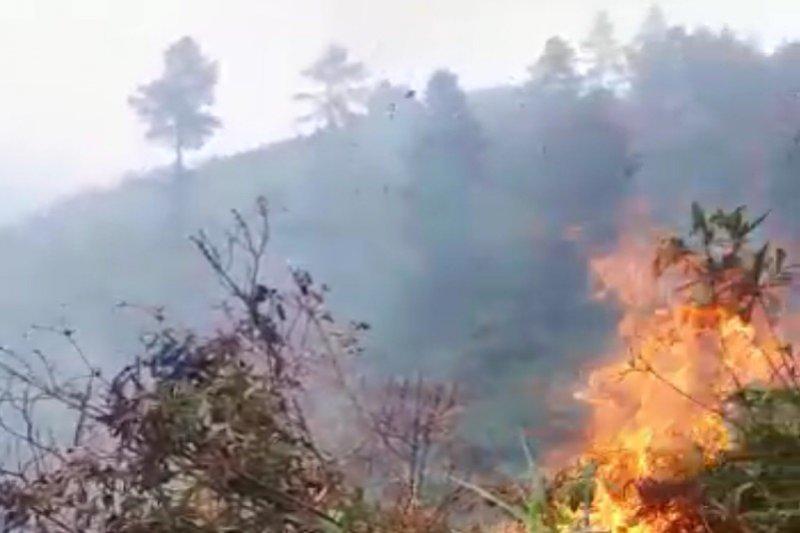 BPBD Banjarnegara imbau masyarakat waspadai kebakaran lahan