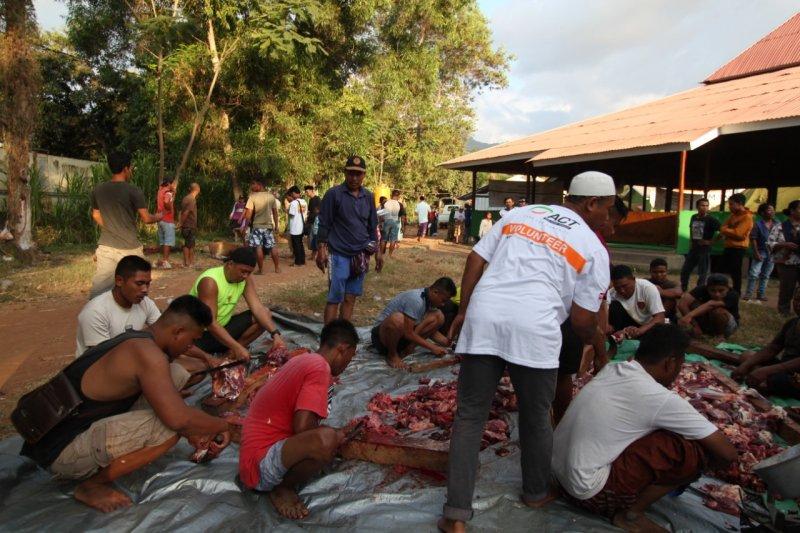 Global Qurban ACT sembelih 15 sapi untuk korban gempa Lombok
