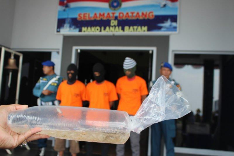 KKP gagalkan penyelundupan benih lobster senilai Rp13,8 miliar