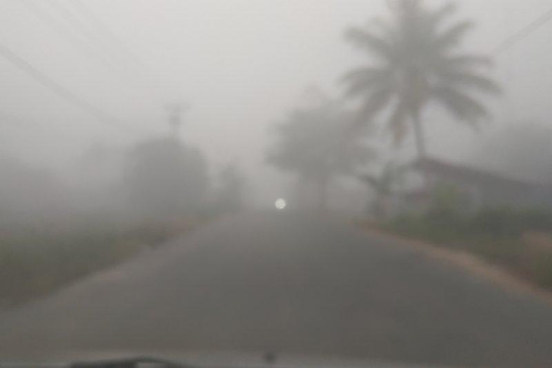 BPBD Pontianak: 10 hektare lahan gambut terbakar