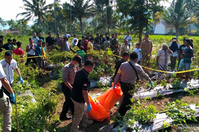 Mayat di kebun cabai, polisi temukan gelas plastik berisi racun dekat Sabarudin