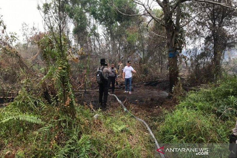 Pembakaran lahan di Palangka Raya sengaja dan diduga terorganisasi