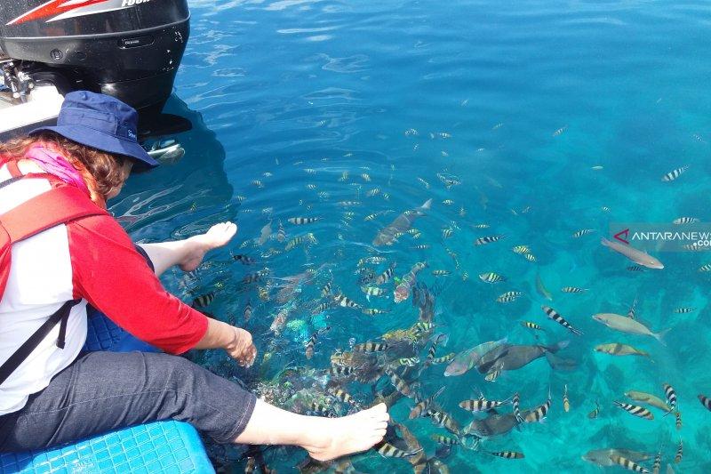 Pulau Gam,  tujuan wisata yang mempesona