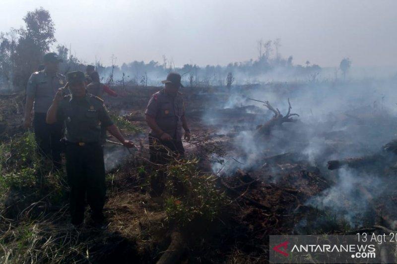 Polisi catat lima hektar lahan gambut milik  pemerintah terbakar