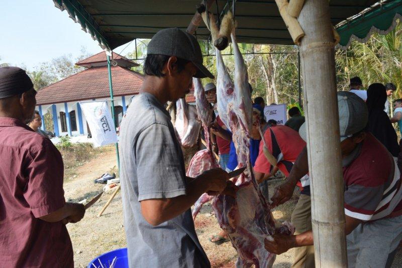 Tasyakuran kurban, ACT DIY bagikan ribuan paket daging kurban
