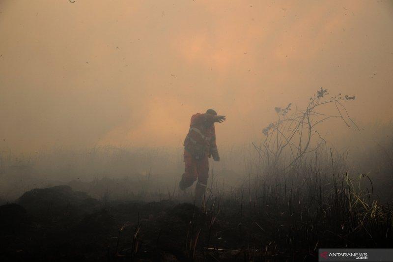 Asap kebakaran hutan Sumsel capai Riau dan Jambi