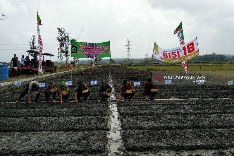 Produksi bawang merah Kulon Progo ditarget 6.135 ton