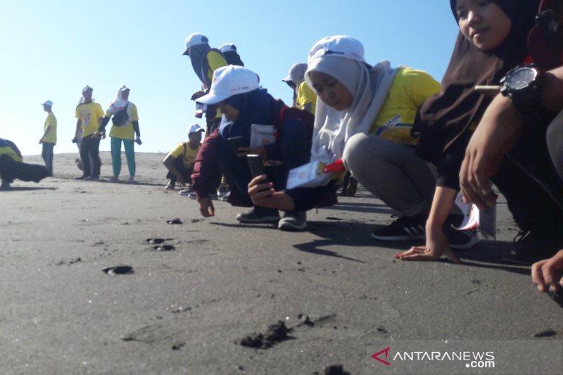 Di Pantai Pelangi Bantul 30 peserta SMN Riau melepas tukik