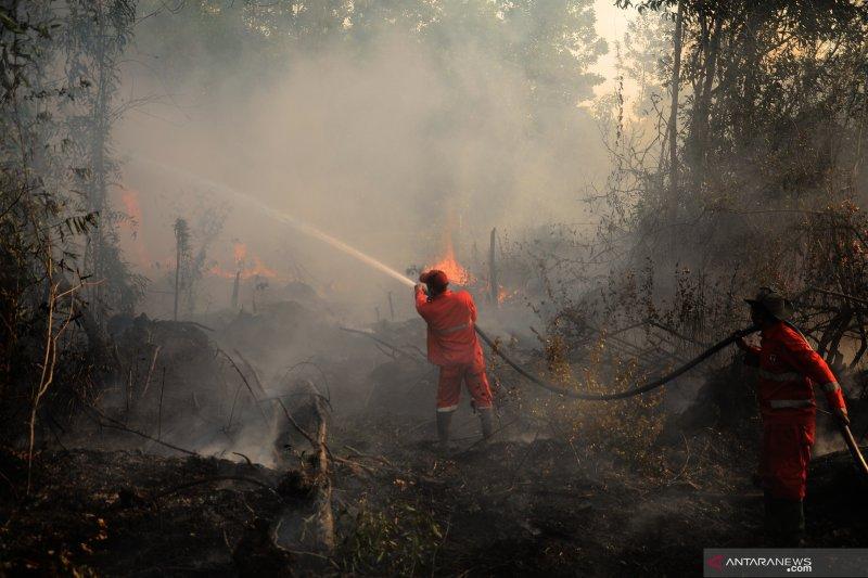 1.822 hektare hutan dan lahan di Sumsel terbakar