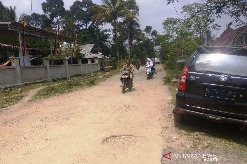 Masyarakat Aripan tanam padi di jalan berlubang