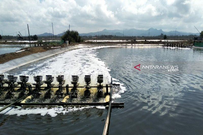 DKP Kulon Progo mendorong petambak udang beralih budi daya nila