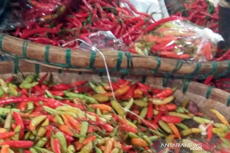 Harga cabai rawit merah di Purwokerto mulai turun