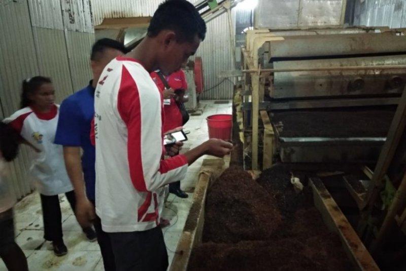 SMN NTT dapatkan  pengalaman mengolah teh di Kerinci