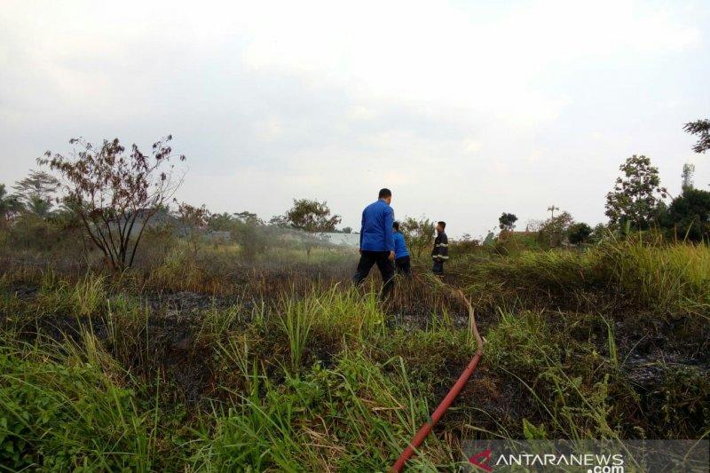 Selama Agustus, 5.500 meter persegi lahan terbakar