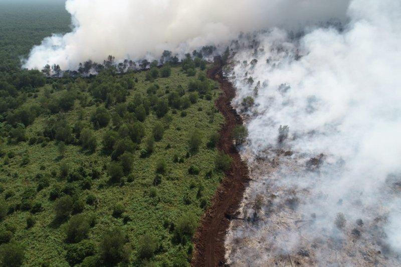 Kebakaran lahan dekati  lokasi konsesi perusahaaan Sinar Mas