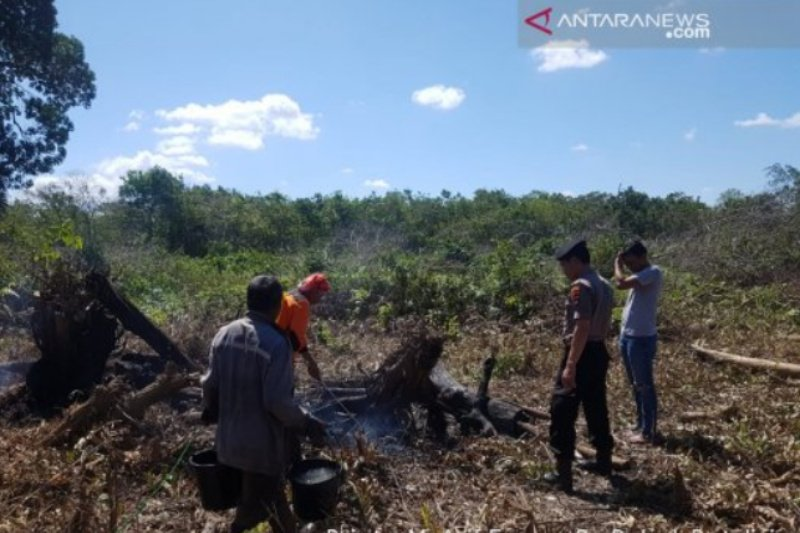 Tiga pembakar lahan ditangkap