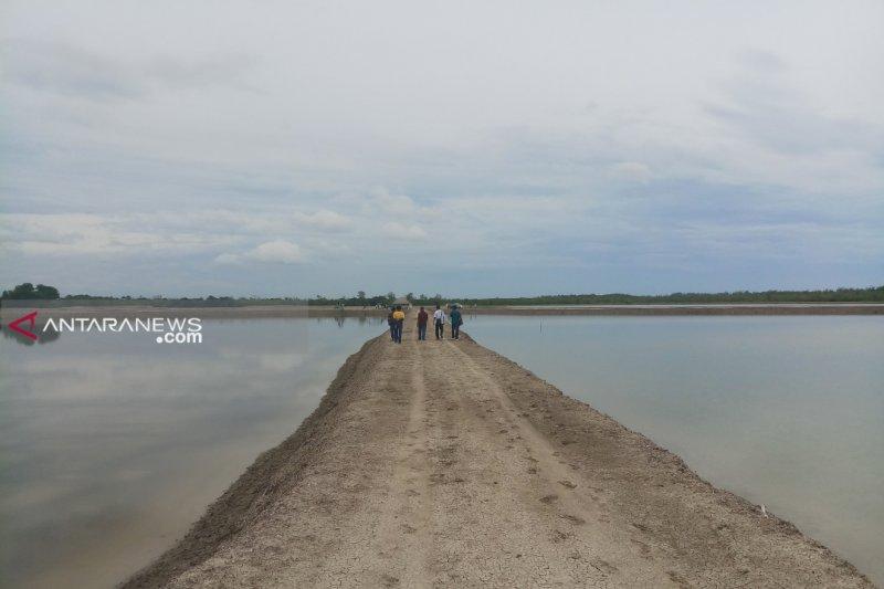 Malaka targetkan 5.000 hektare untuk lahan garam