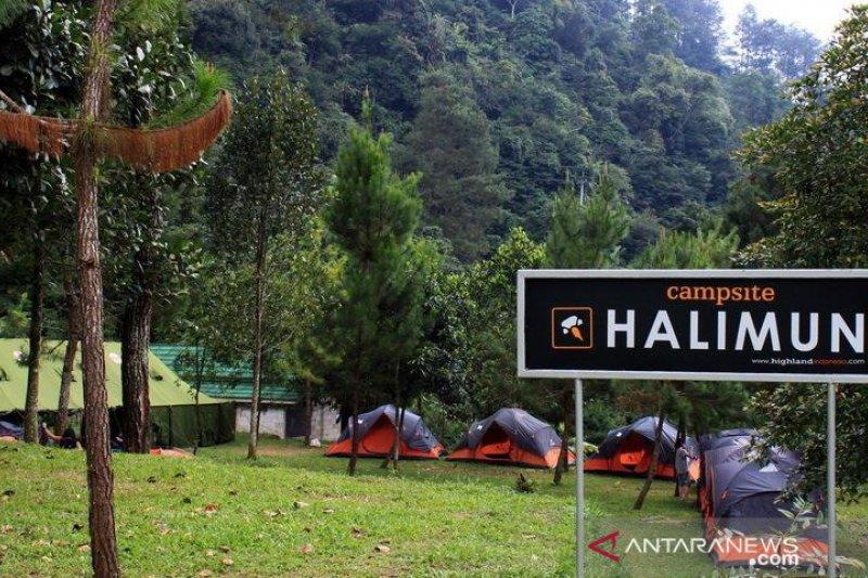 250 peserta HYCamp 2019 mendaki Gunung Halimun