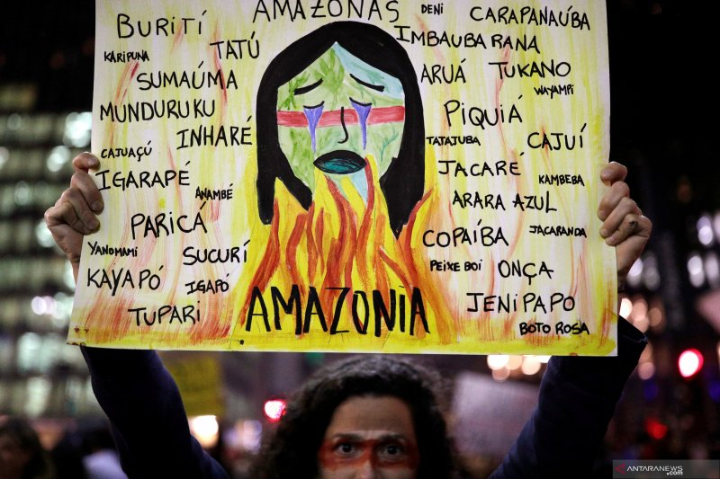 Wali kota Paris ikut kecam pembakaran hutan Amazon