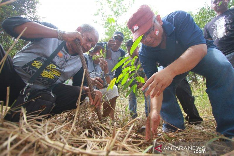Antara Kalsel tanam bibit pohon gaharu di Tahura Sultan Adam