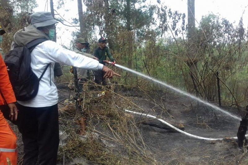 Kebakaran hutan di kawasan Merapi berhasil dipadamkan tim gabungan