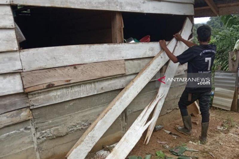 Rumah warga translok di Nagan Raya Aceh rusak diamuk gajah liar
