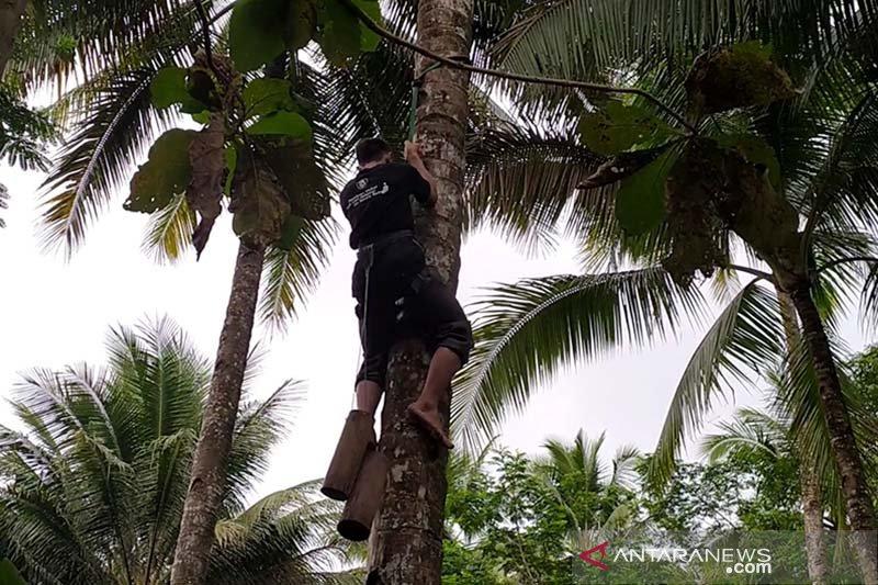 BI Purwokerto salurkan bantuan alat keselamatan bagi penderes kelapa