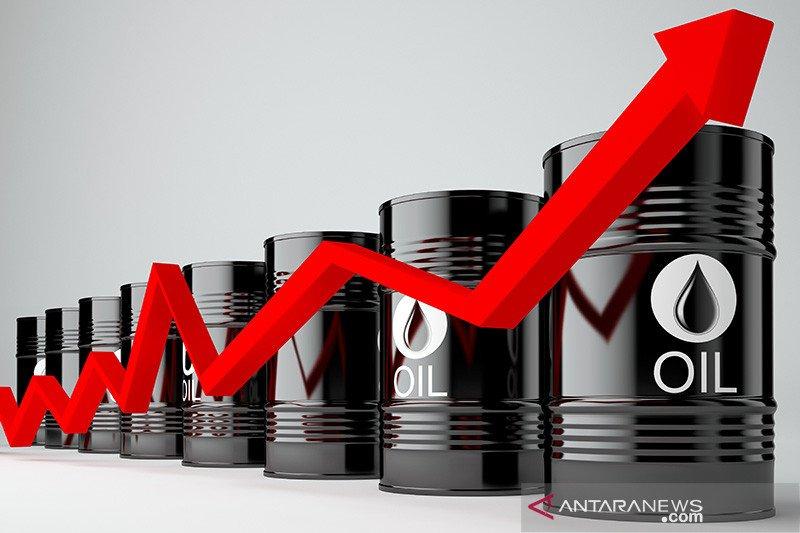 Harga minyak naik menyusul ledakan kapal tanker minyak Iran