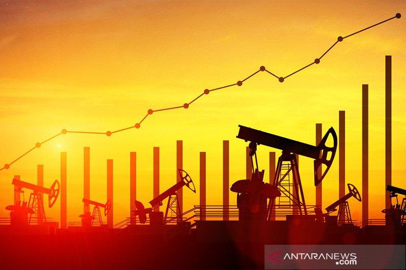 Harga minyak naik setelah OPEC indikasikan pangkas produksi