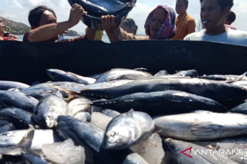 Ekspor tuna NTB mencapai Rp10,58 miliar