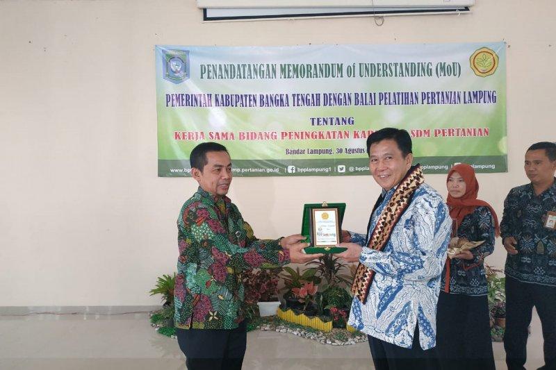 Bangka Tengah-BPP Lampung kembangkan pertanian
