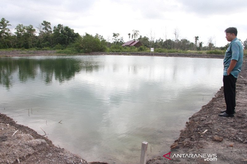 Produksi ikan  patin OKU Timur capai 96 ribu ton/tahun