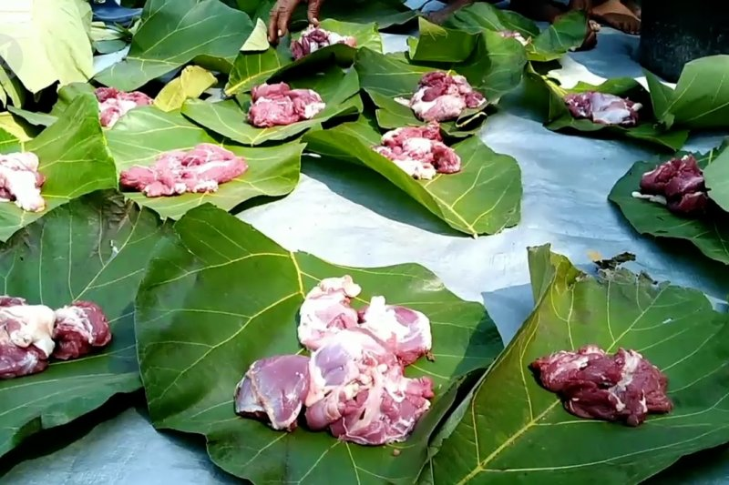 Membungkus daging kurban dengan daun jati