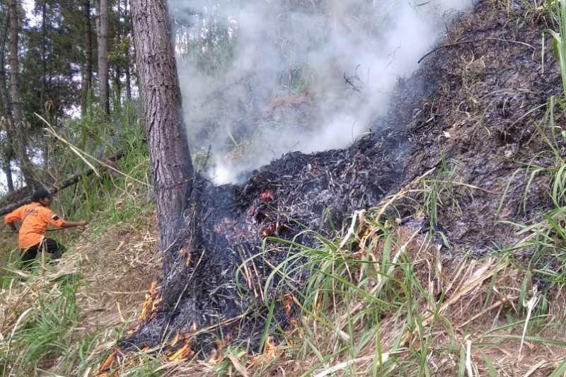 BPBD Magelang padamkan kebakaran di lereng Gunung Andong