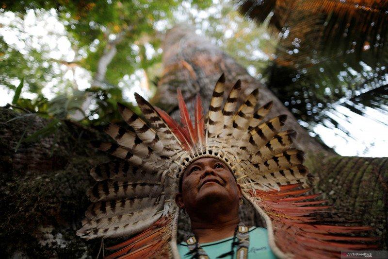 Suku-suku serukan hutan Amazon dilindungi