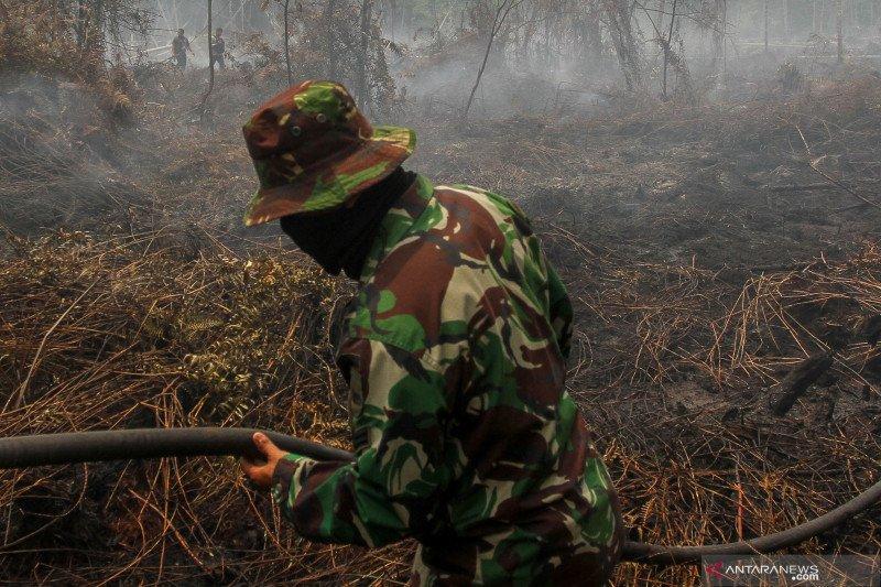 Karhutla Riau - Kebakaran lahan muncul di konsesi Chevron di Riau, begini penjelasannya