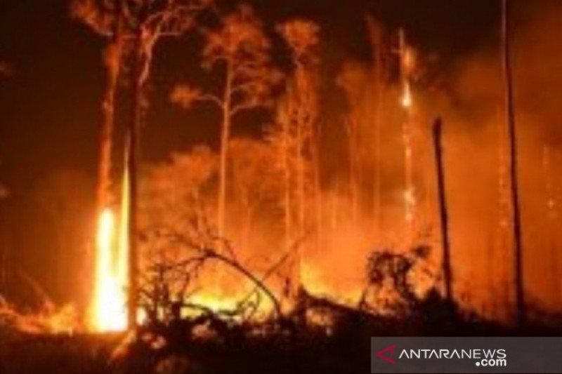 138 titik panas terdeteksi di Bangka Belitung