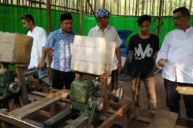 Kayong Utara siap menjadi lumbung pakan ternak herbal