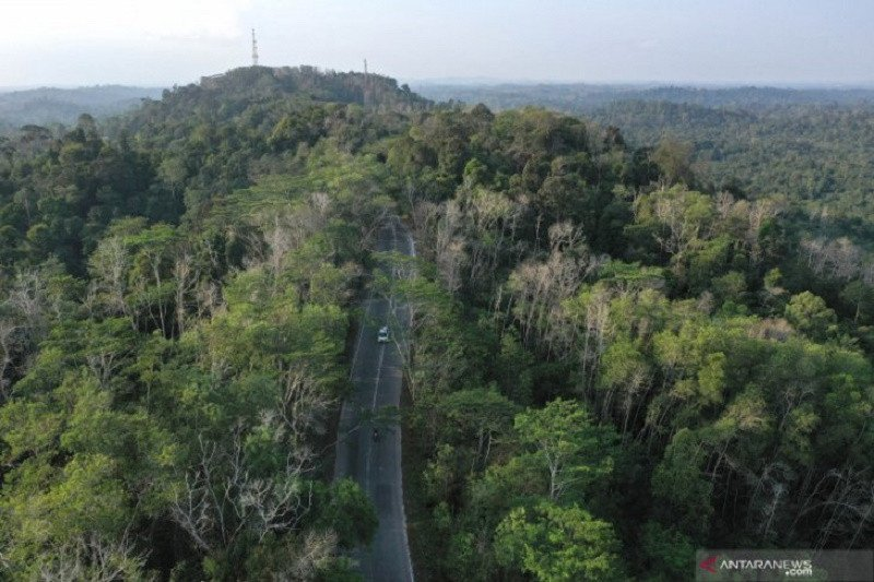 Warga Seruyan harapkan penguasaan tanah dalam kawasan hutan bisa dilakukan